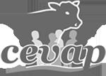 Boucher de France - Logo Partenaire - CEVAP